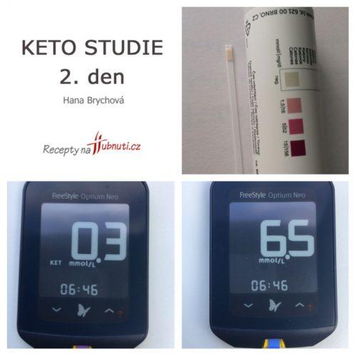 Studie ketoza 2.den